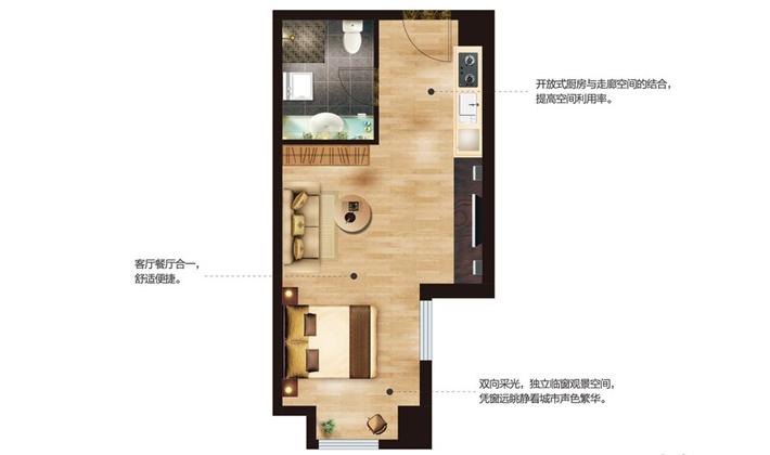公寓D户型47平米一时